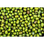Fresh Green Mung Bean from  Myanmar