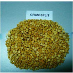 Yellow Gram Split from Myanmar