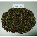 Cow Pea Soyabean Meal (008 / S / 09)