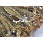 Long and Thin dried fishes of Myanmar