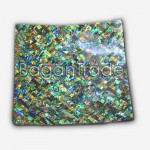Paua Shell Gorgeous Tray with Green Color