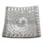 Rectangle design Trochus shell Plate