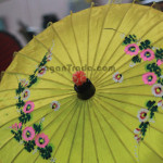 Floral Design of Traditional Umbrella