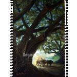 The Beautiful Rain Tree and the Hackney