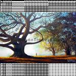 Falling Hazes in Winter Morning by Artist Win Min Mg