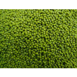 Green munk beans for sale