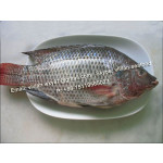 Offer Frozen Black Tilapia Fish Whole Round  (Oreochromis Niloticus) for sale