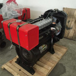 Twin cylinder water cooled diesel engine water pumps