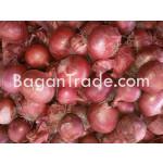 Fresh Raw Onion in Myanmar