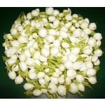 Jasmine Flower Exporters India