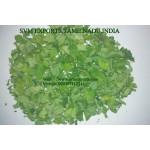 Moringa leaves Exporters India