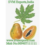 Papaya Leaves Exporters India