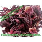 Hibiscus Rosa Sinensis Flower(Single Petals) Manufacturers