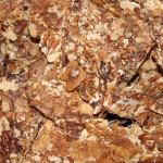 Walnut oilcake